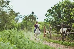 Боковский конный клуб